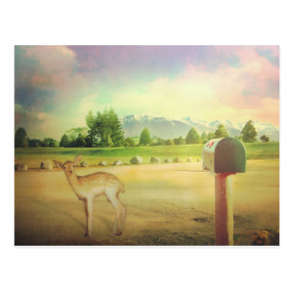 New Zealand bambi dear Postcard