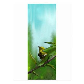 New Zealand Bellbird Postcard