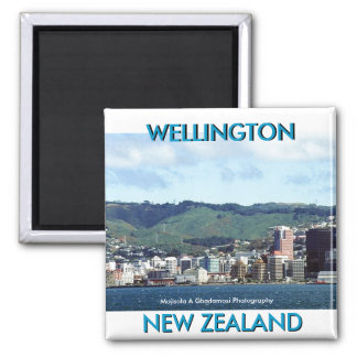 NEW ZEALAND BY MOJISOLA A GBADAMOSI MAGNET