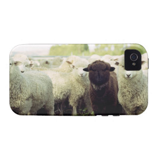 New Zealand iPhone 4/4S Covers