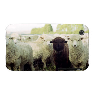 New Zealand iPhone 3 Case-Mate Cases