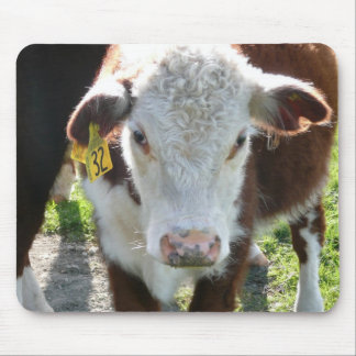 New Zealand Cow Mouse Pad