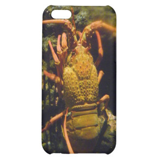 New Zealand Crayfish iPhone 5C Covers