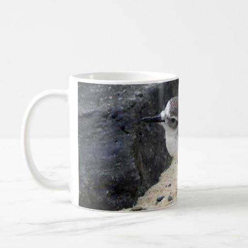 New Zealand Dotterel Coffee Mugs