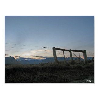 New Zealand Fence Poster
