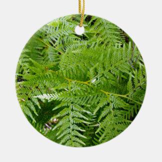 New Zealand Fern Ceramic Ornament