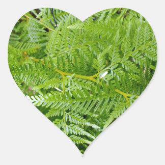 New Zealand Fern Heart Sticker