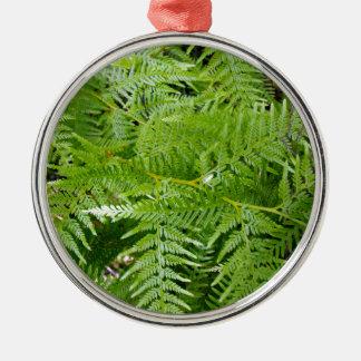 New Zealand Fern Metal Ornament