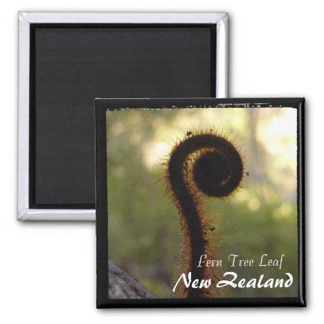 New Zealand, Fern Tree, Wilderness (Magnet)