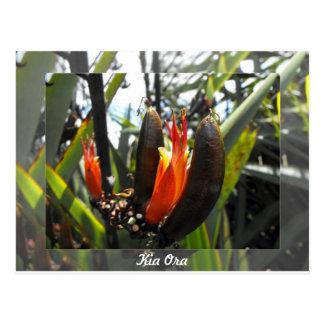 New Zealand Flax Blossoms Postcard