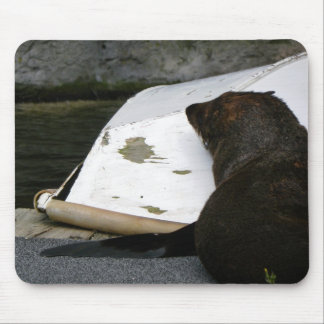 New Zealand Fur Seal Mouse Pad