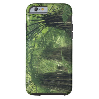 New Zealand Haast Valley Westland Soft Tree iPhone 6 Case