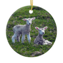 New Zealand Lambs Ceramic Ornament