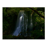 New Zealand: Matai Falls Postcard