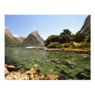 New Zealand, Mitre Peak, & Bowen River entering Postcard