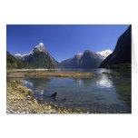 New Zealand, Mitre Peak & Milford Sound, Greeting Card