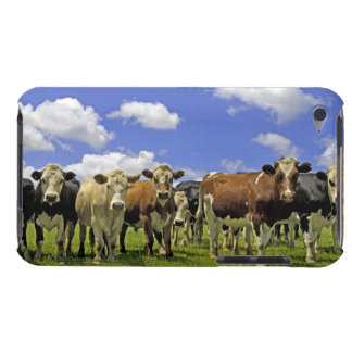 New Zealand, North Island, Auckland Barely There iPod Cover