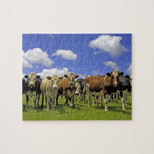 New Zealand, North Island, Auckland Jigsaw Puzzle