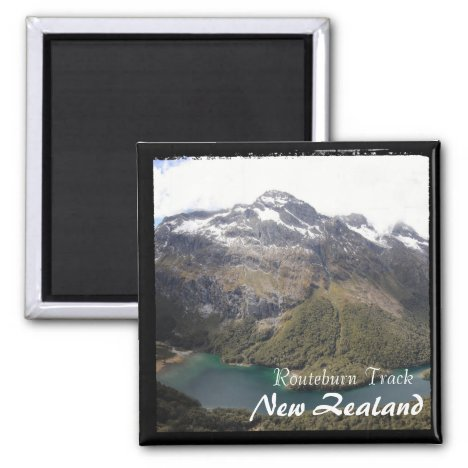 New Zealand, Routeburn Track, Meckenzie (Magnet)