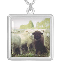 New Zealand Silver Plated Necklace