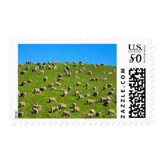 New Zealand, South Island, Canterbury Postage