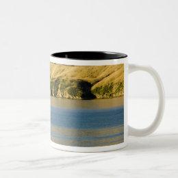 New Zealand, South Island, Marlborough Sounds. 2 Two-Tone Coffee Mug