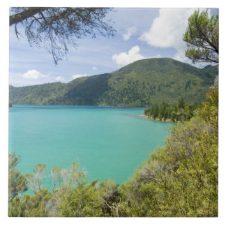 New Zealand, South Island, Marlborough Sounds. Ceramic Tile