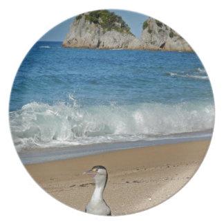 New Zealand South Island Plate