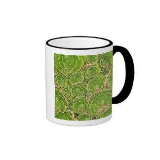 New Zealand, South Island. Succulent. Ringer Mug