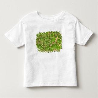 New Zealand, South Island. Succulent. T Shirt