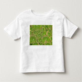 New Zealand, South Island. Succulent. Toddler T-shirt
