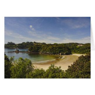 New Zealand, Southland, Stewart Island, Halfmoon Card