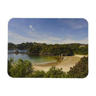 New Zealand, Southland, Stewart Island, Halfmoon Magnet