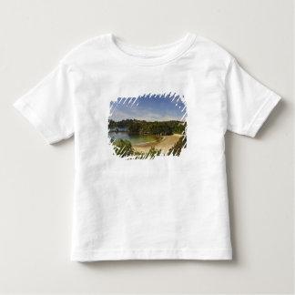 New Zealand, Southland, Stewart Island, Halfmoon Toddler T-shirt