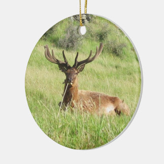 New Zealand Stags Ceramic Ornament