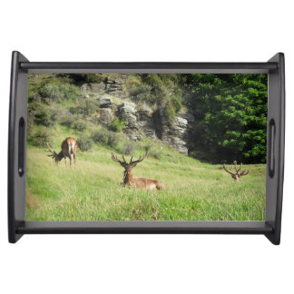 New Zealand Stags Serving Tray