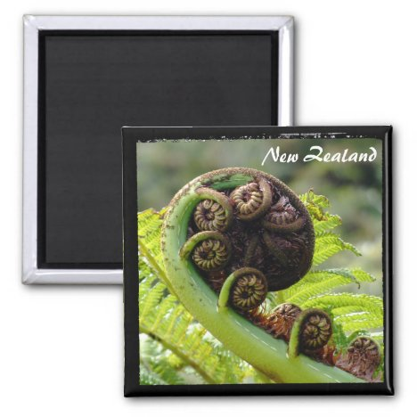 New Zealand, Unfolding Fern, Wilderness (Magnet)