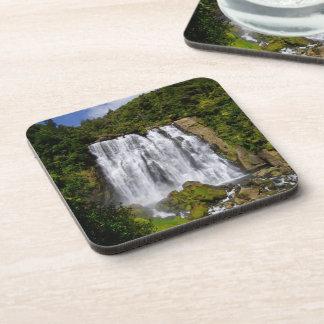 New Zealand Waterfall Coasters