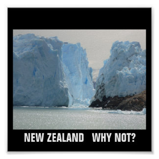 NEW ZEALAND WHY NOT? POSTER