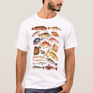 newartsweb - So Many Fish, So Little Time T-Shirt