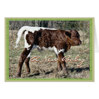 NewBaby-customize for any occasion Card