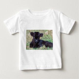 Newborn black scottish highlander calf lying infant t-shirt