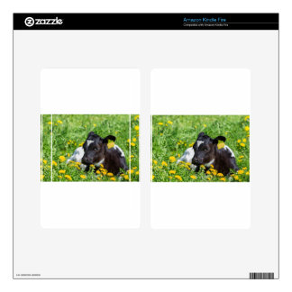 Newborn calf lies in meadow with yellow dandelions kindle fire decal