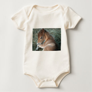 Newborn_Colt_002.jpg Bodysuits