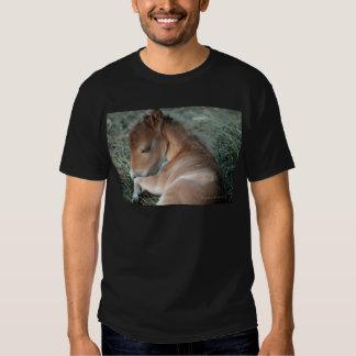 Newborn_Colt_002.jpg Shirts