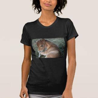 Newborn_Colt_002.jpg T-shirt