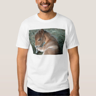 Newborn_Colt_002.jpg Tshirt