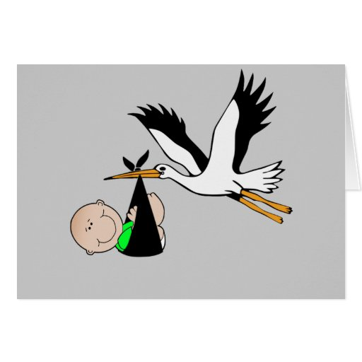 Newborn Delivery by Stork Greeting Card