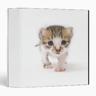 Newborn kitten 3 ring binder