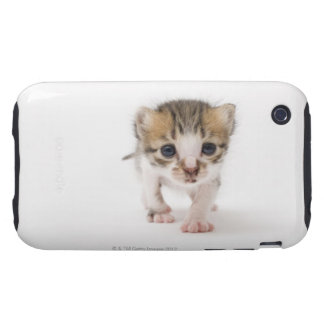 Newborn kitten tough iPhone 3 case